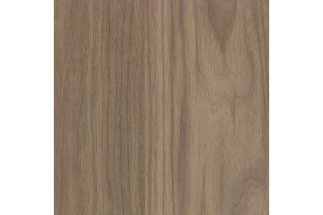 Walnut (Black American)